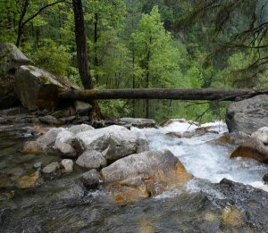 Himachal-Pradesh- stream-hiking