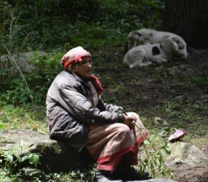 himachal-pradesh-travel-old-villager