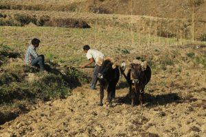 farm tours India