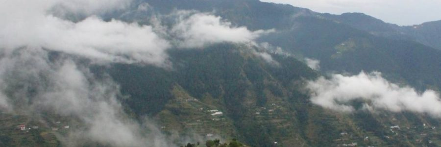 View from window of the homestay in Shimla