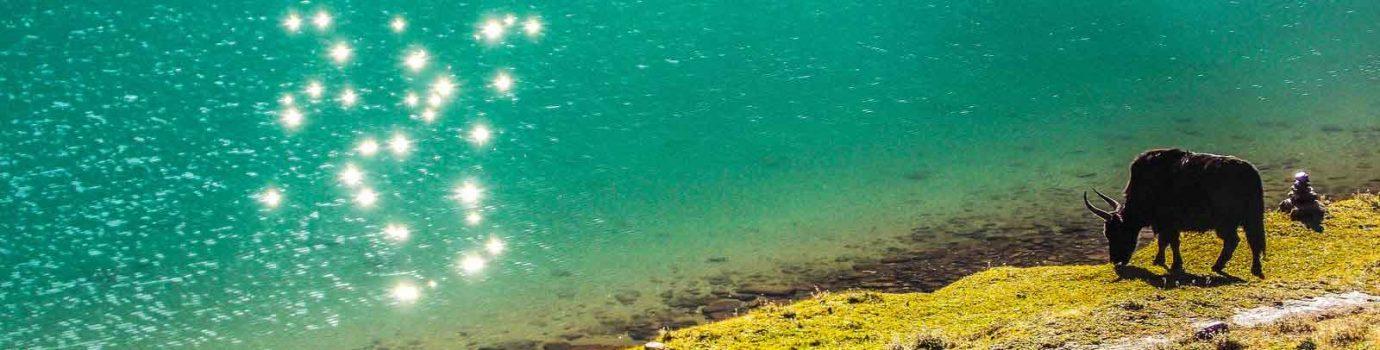 Chandrataal lake hiking camping trip