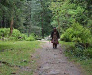 himachal-pradesh-hiking-tours